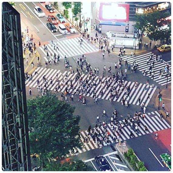 15 Curiosidades de Japón. 11